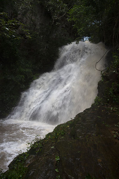 Foto van Kulugu waterfall thundering down the forest near Biakpa - Ghana - Afrika