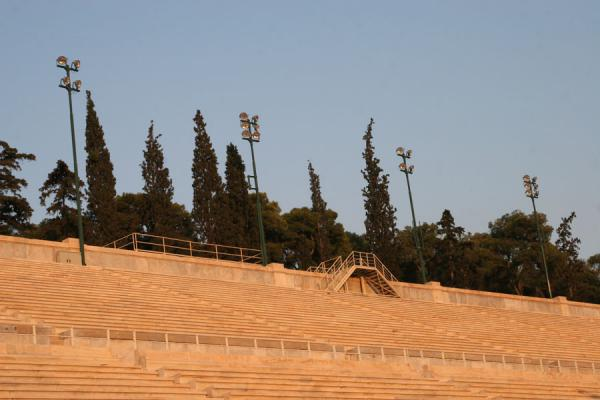 Trees topping Panathinaiko Stadium | Panathinaiko Stadium | Greece