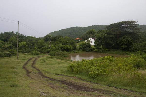 Track with pond and house in the mountains of Carriacou | Carriacou Island | Grenada
