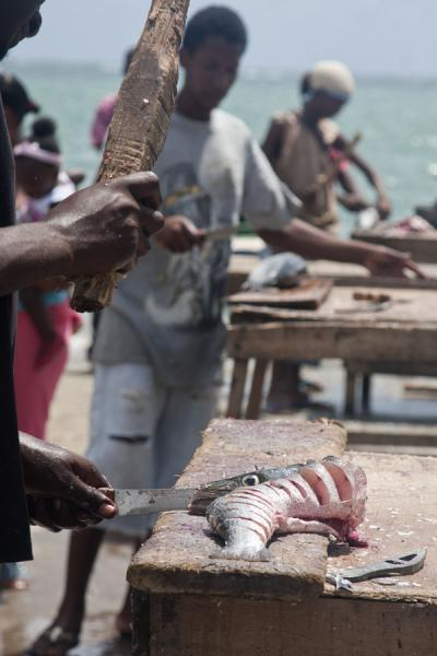 Picture of Grenville (Grenada): Fresh fish being prepared for sale on the fishmarket in Grenville