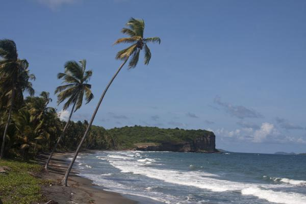 The coast close to Lake Antoine where waves roll in from the east | Lake Antoine | Grenada