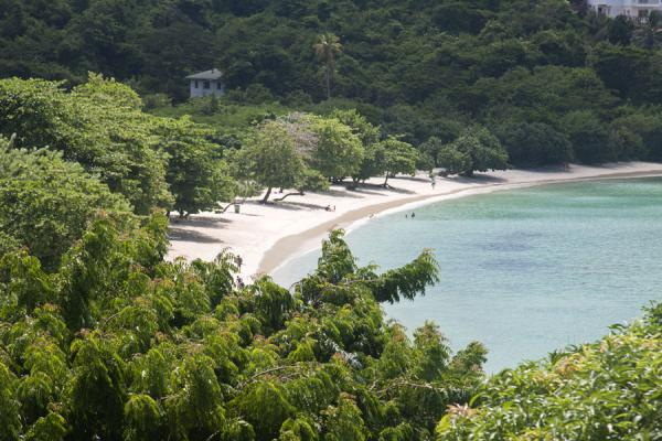 Picture of Morne Rouge Beach (Grenada): View of the Morne Rouge beach from a distance