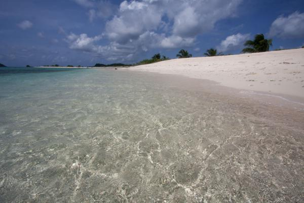 Sandy Island with white beach and transparent sea | Sandy Island | Grenada
