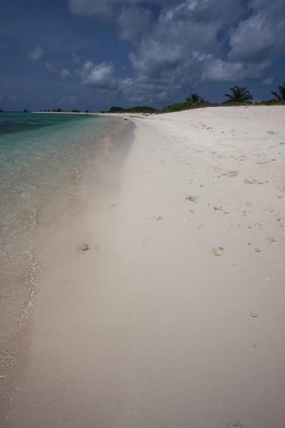 Stretch of deserted white beach on Sandy Island | Sandy Island | Grenada