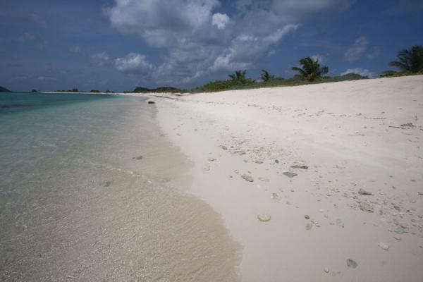 White sand and turquoise sea: Sandy Island | Sandy Island | Grenada