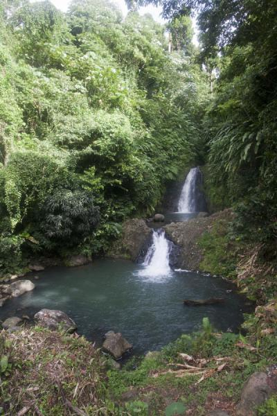 Picture of Seven Sisters Waterfall (Grenada): The waterfalls of the Seven Sisters