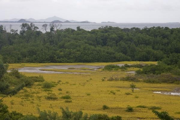 Picture of Windward (Grenada): View north from Windward, over the swamp, with Petite Martinique in the background