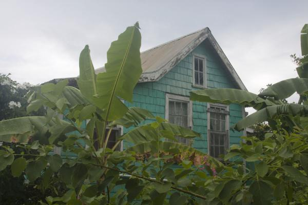 Picture of Windward (Grenada): Typical wooden house in green colours in Windward
