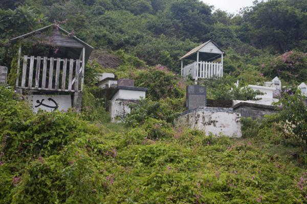 Picture of Windward (Grenada): Small cemetery with tombs surrounded by vegetation in Windward