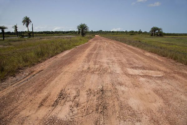 Foto di The notoriously bad road between Sao Domingos and Varela - Guinea-Bissau - Africa