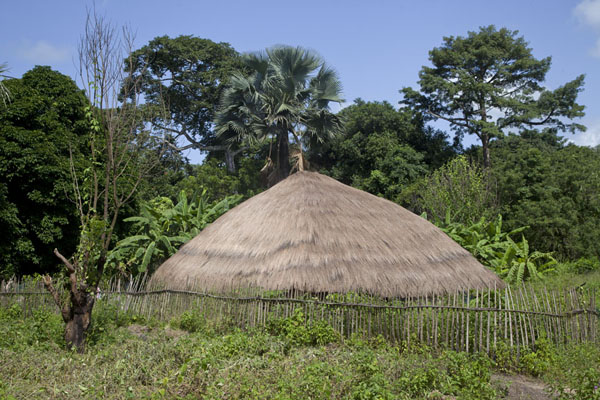 Foto di Straw hut in the countryside near VarelaVarela - Guinea-Bissau