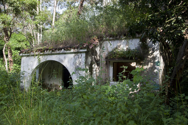 Decaying house, Amilcar Cabral, the liberation fighter of Guinea Bissau supposedly stayed here | Varela | Guinea-Bissau