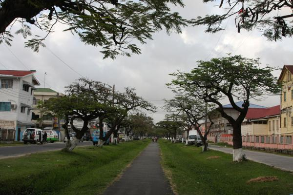 Foto van Typical street in Georgetown with a walking path in the middleGeorgetown - Guyana