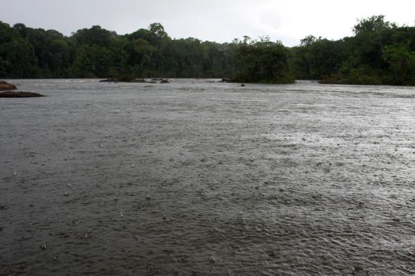 Foto van Rain pouring down on the Essequibo riverIwokrama - Guyana