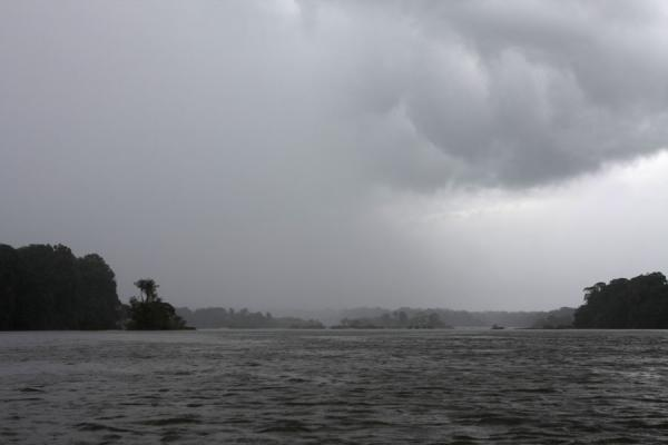 Picture of Iwokrama rainforest (Guyana): Rain over the Essequibo river and the Iwokrama rainforest
