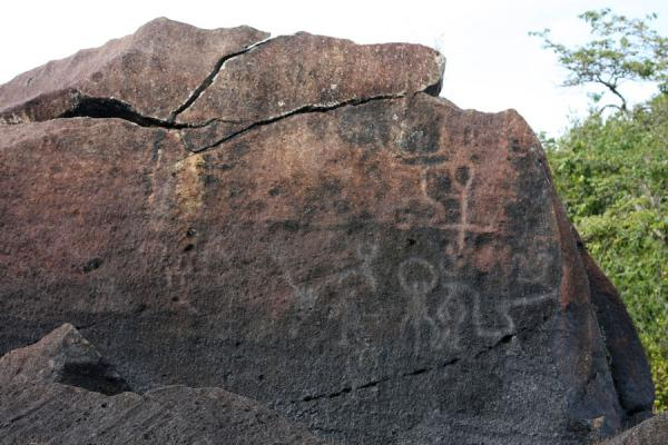 的照片 Petroglyphs of Amerindians at Iwokrama - 圭亚那