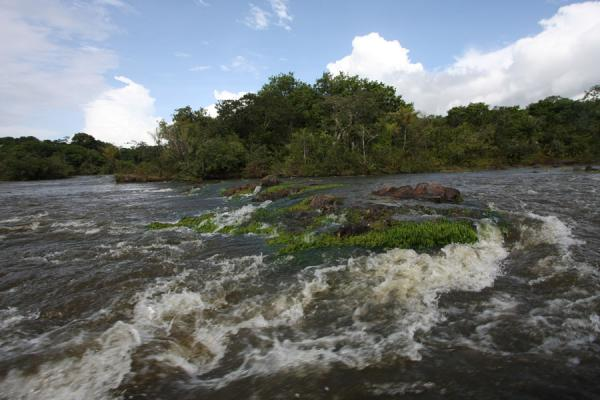 Picture of Iwokrama rainforest (Guyana): Rapids in the mighty Essequibo river near Kurupukari