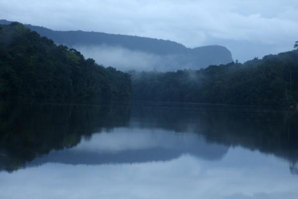Picture of Reflections of mountain, rainforest and early evening fog in the Potaro river