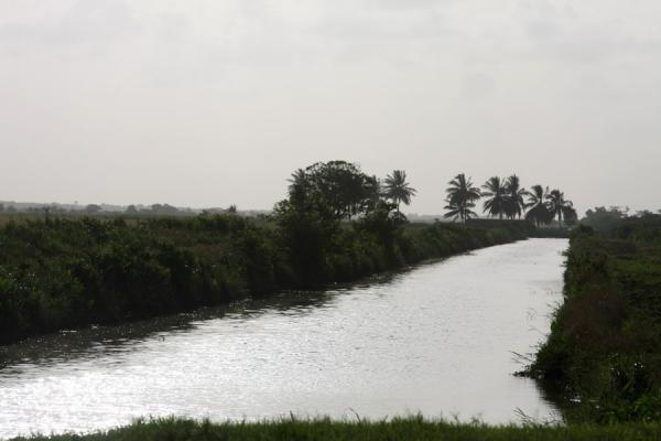 Picture of West Demerara landscape (Guyana): Part of the defence system against the sea: canal in West Demerara