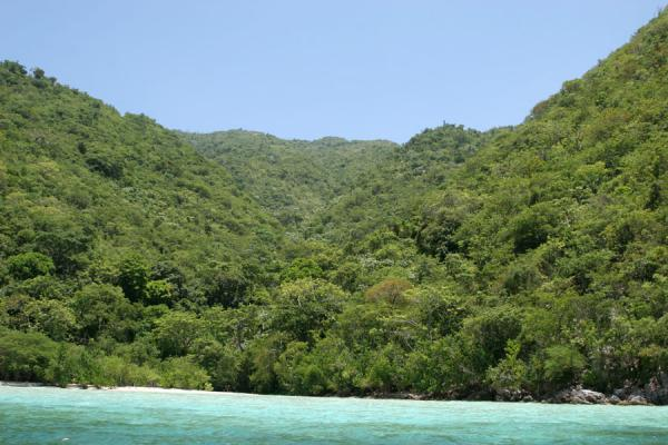 Picture of Cadras beach or Paradise, dwarfed by tree-covered hills - Haiti - Americas