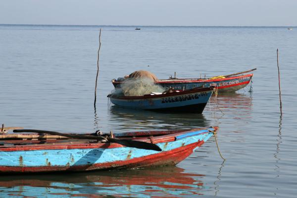 Colourful fishing boats in the bay of Labadie |  | 海地