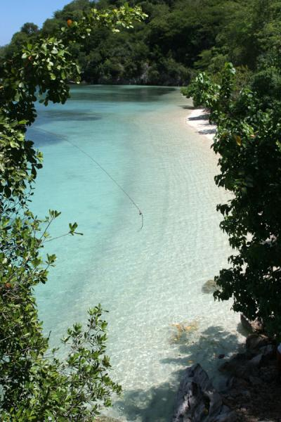 Picture of Transparent turquoise water near Labadie