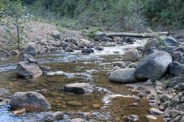 Another river on the way up to Celaque mountain | Celaque | Honduras