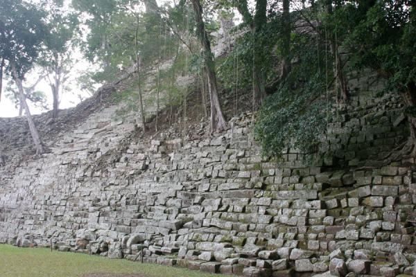 Picture of Copán: stairs leading to thew temple of the inscriptions
