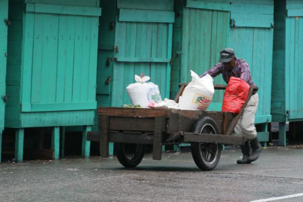 Pushing a cart past closed market stalls | La Ceiba | Honduras