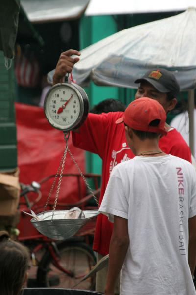 Weighing produce: fish seller on the market of La Ceiba | La Ceiba | Honduras