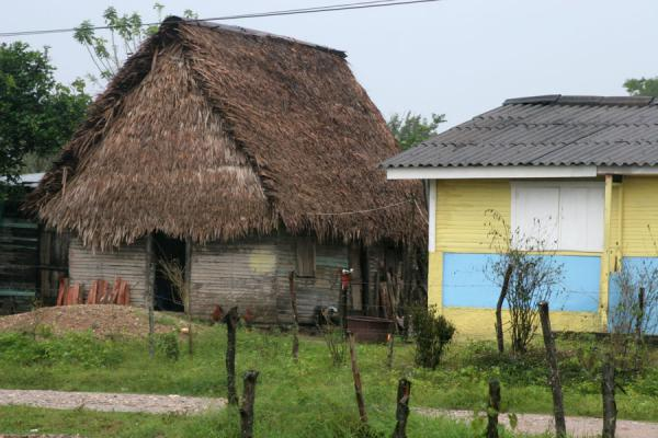 Foto de Authentic house and modern one side by side in LimónLimón - Honduras