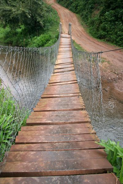 Foto de Shaky bridge at the beginning of my trek through the Sierra del MerendonSierra del Merendon - Honduras
