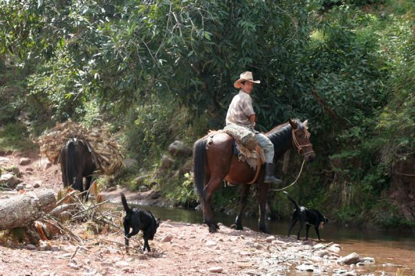 Picture of Sierra del Merendon (Honduras): On the way to San Agustín: man on horse crossing river