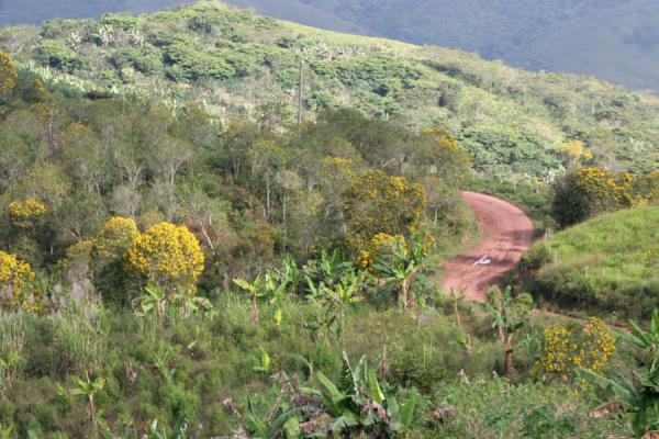 Foto de The road to San Agustín meandering through the landscapeSierra del Merendon - Honduras