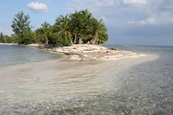 Foto de Water Key rising out of the turquoise waters around Utila KeysCayos de Utila - Honduras