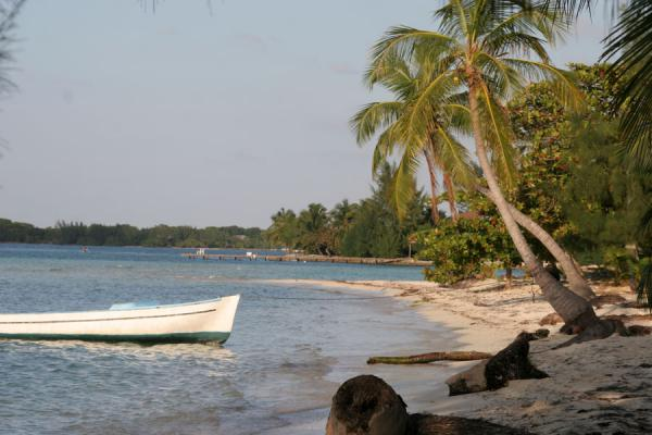 Foto van Boat and beach at Water KeyUtila Keys - Honduras