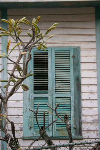 Window in Utila town | Utila | Honduras