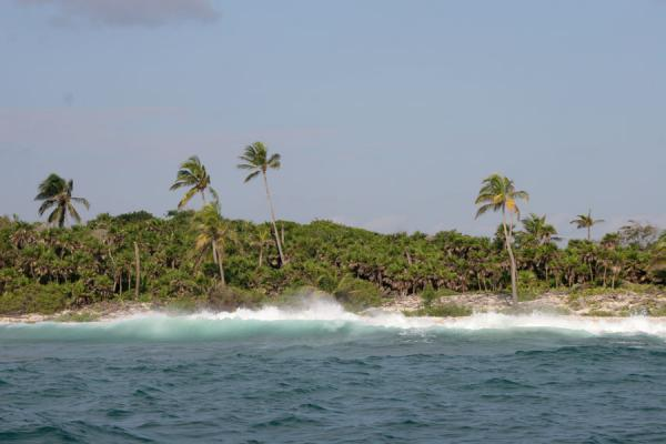 Foto de Waves breaking on the beachUtila - Honduras