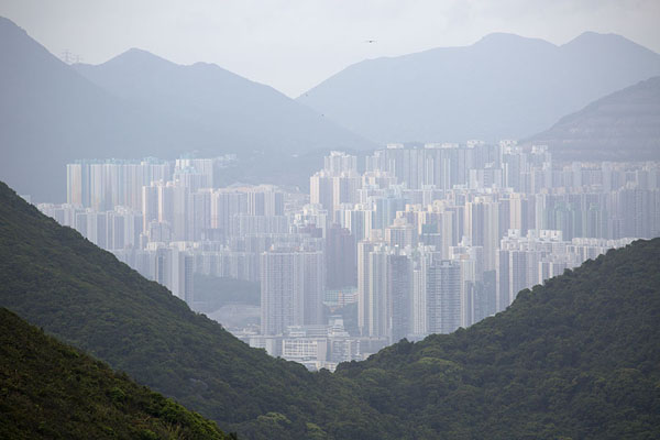 The skyline of Hong Kong visible between the hills of the island | Dragon's Back Trail | 香港