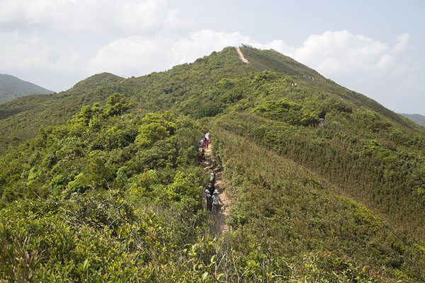 Foto de Hills with the trail running right over it: the Dragon's Back - Hong Kong - Asia