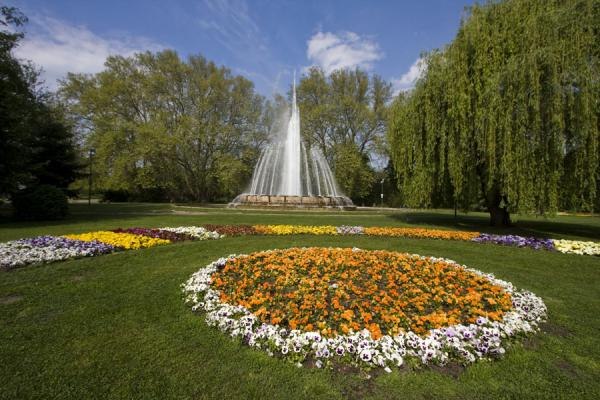 Picture of Hungary (Musical fountain and colourful flower beds on Margaret Island)