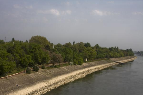 Foto di Margaret Island seen from Margit Hid, the southern tip of the islandIsola Marghareta - Ungheria