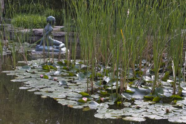 Statue in the waters of a pond in the Japanese Garden | Margit eiland | Hongarije