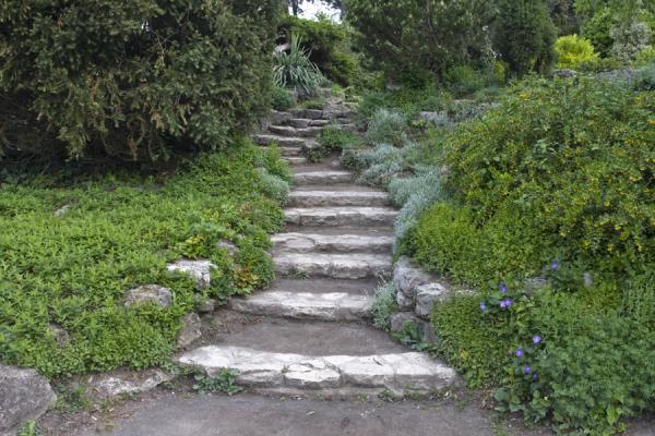 Foto di Romantic stairs in the Japanese GardenIsola Marghareta - Ungheria