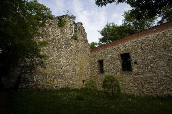 The only remaining walls of the Franciscan church and monastery | Margit eiland | Hongarije