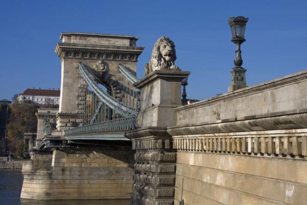 One of the lions guarding Széchenyi chain bridge | Széchenyi pont à chaînes | Hongrie
