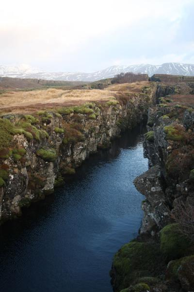 Picture of Þingvellir (Iceland): Crack filled with clear water in the Þingvellir area