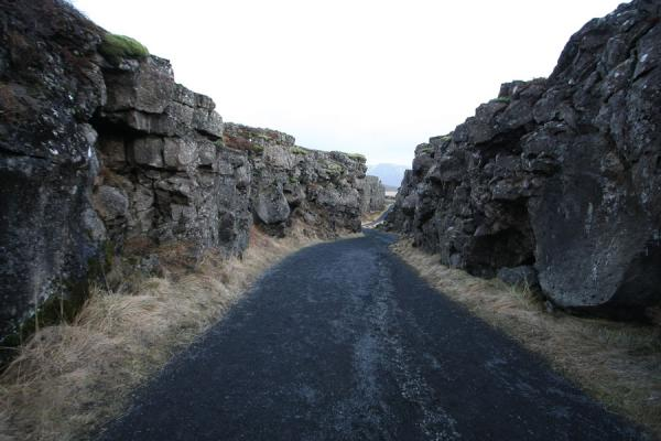 Picture of Inside the Almannagjá faultÞingvellir - Iceland