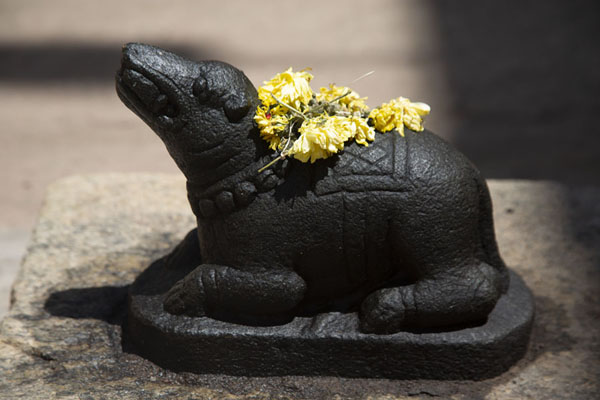 Foto de Mooshak decorated with flowers in front of the small temple inside the fortBengaluru - India