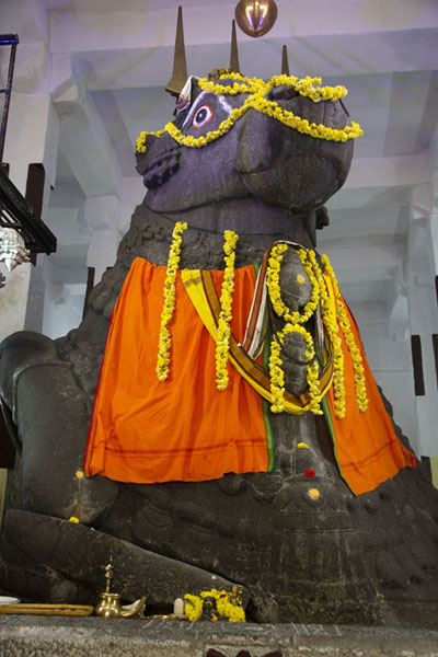 Picture of The granite statue of Nandi, the sacred bull - India - Asia